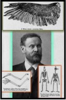 Biografi Wright bersaudara, penemu pesawat terbang pertama kali 21