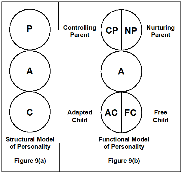 Transactional Analysis Theory and Practice: Transactional