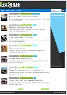 Screenshoot Template Brosense