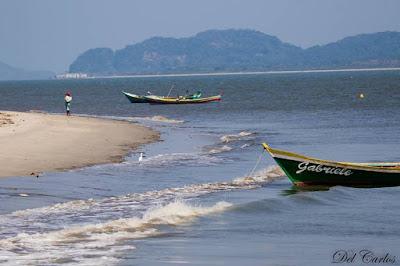 Catamarã com reservas abertas para passeios ao Marujá, Ponta Norte, Guaraqueçaba (PR) e Boqueirão Sul