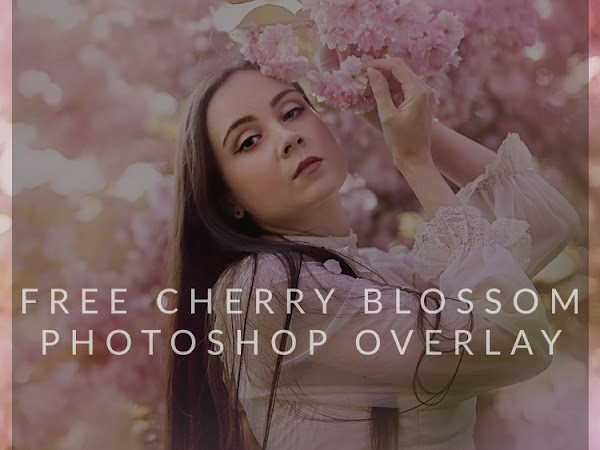 Freebie Friday Cherry Blossom Overlay for Photographers