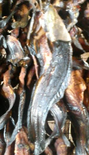 Daftar harga ikan salai online Terbaru