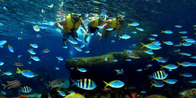Tips Snorkeling Ramah Lingkungan