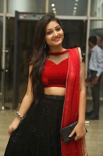 Priyanka Stills (10).jpg