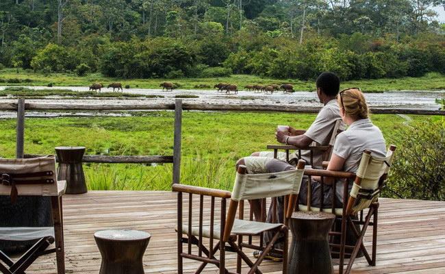 www.xvlor.com Odzala-Kokoua National Park