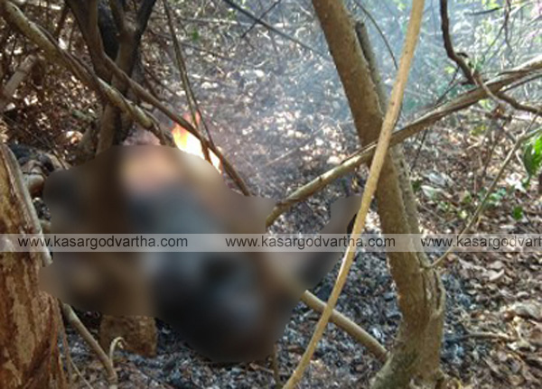 Burnt body found near railway track, murder or suicide not known, Mangalore, news, National, Top-Headlines, Deadbody, Railway-track, police-station, Police, Postmortem, enquiry, hospital, Burnt