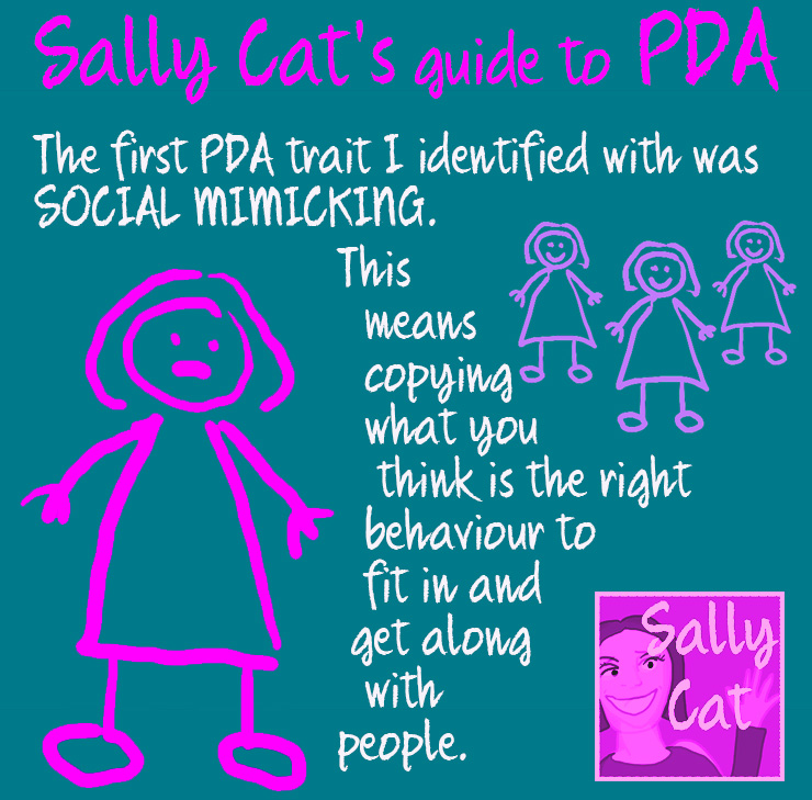 Sally Cat PDA: Why I Believe PDA Social Mimicry and Masking are ...