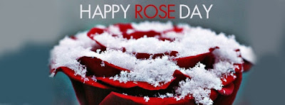 rose-day-Pictures-2017-Download