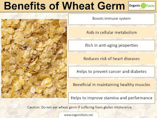 wheatgerm analysis infographic