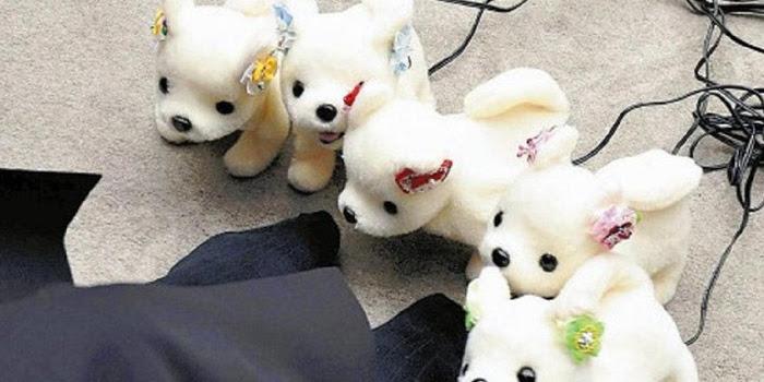 Kecanggihan Robot Anjing Yang Bisa Mendeteksi Bau Kaki Yang Tak Sedap