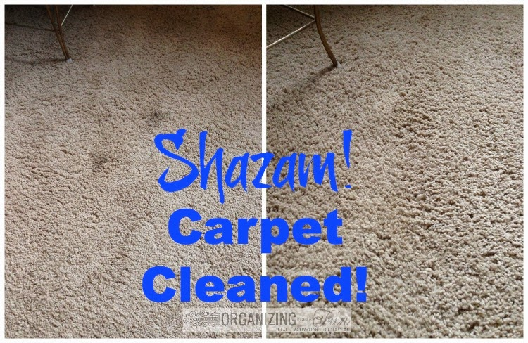 Carpet Cleaning with all natural ingredients :: OrganizingMadeFun.com