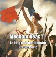 http://mechantreac.blogspot.fr/