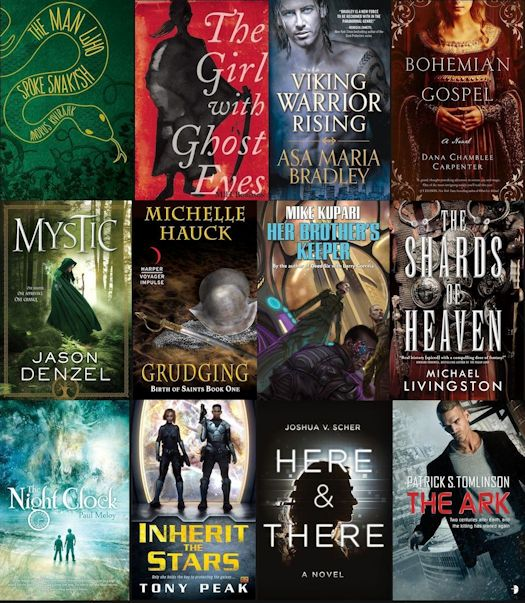2015 Debut Author Challenge Cover Wars - November Winner