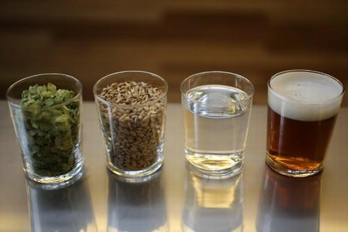 elementos que compõem a cerveja