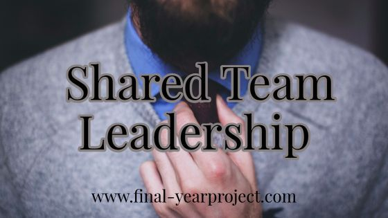 Shared Team Leadership