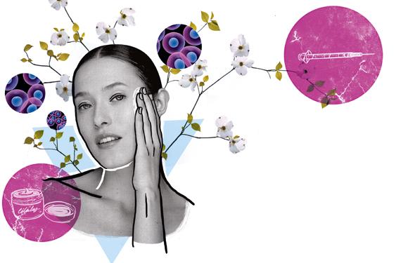 Células madres y la cosmética