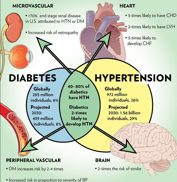 Why Does Diabetes Cause Hypertension? - How to Avoid Diabetes