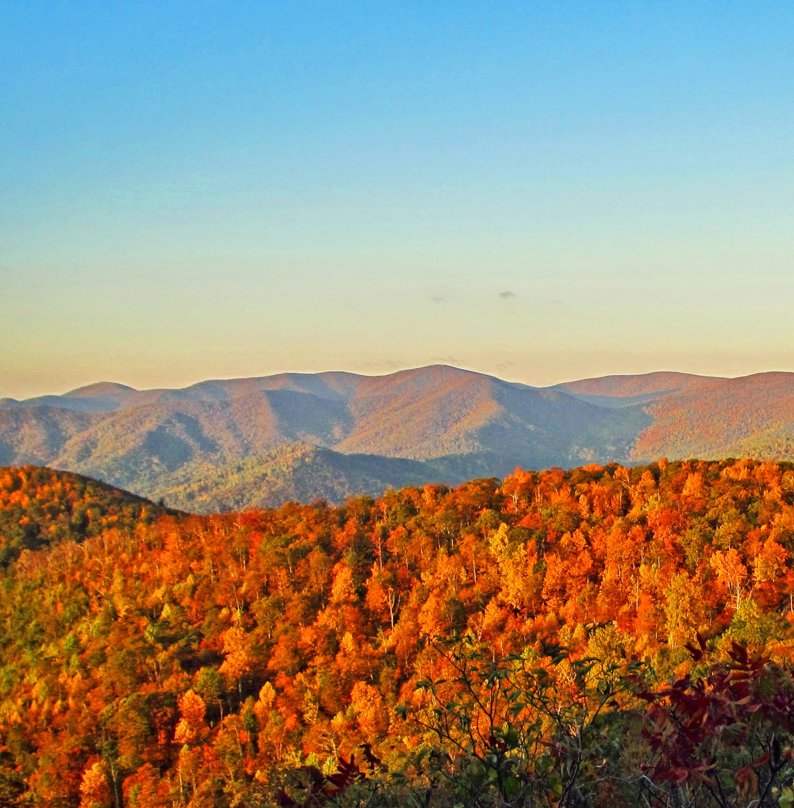Old Rag Mountain Hikes/Patrols By RSL: Peak Leaf Color