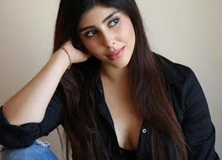 Actress Aditi Singh Images