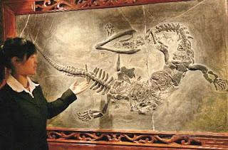 Fakta dan Mitos Tentang Naga
