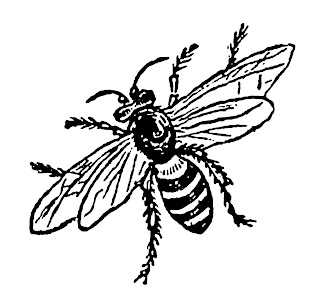 bee insect illustration digital image clip art transfer