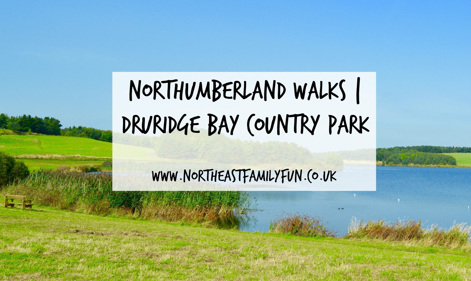 A walk around Ladyburn Lake at Druridge Bay Country Park | Northumberland