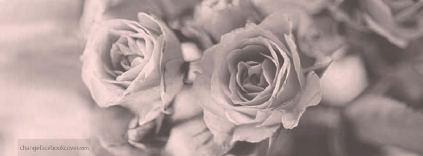 Vintage Flower Facebook Cover Photo | www.pixshark.com ...