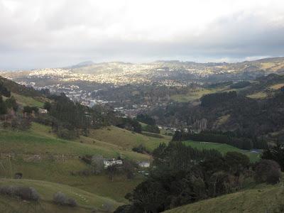 Vista de Dunedin desde las colinas, en Nueva Zelanda
