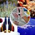 Penanggulangan Dampak Negatif Bioteknologi