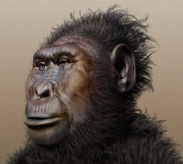 Tooth wear patterns suggest Paranthropus early hominins had softer diets than expected
