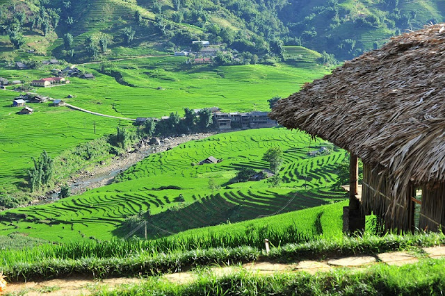 Why Halong & Sapa tours are special?