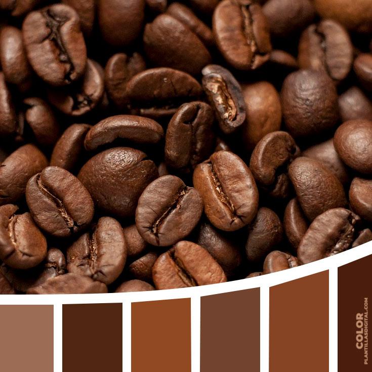 color_408