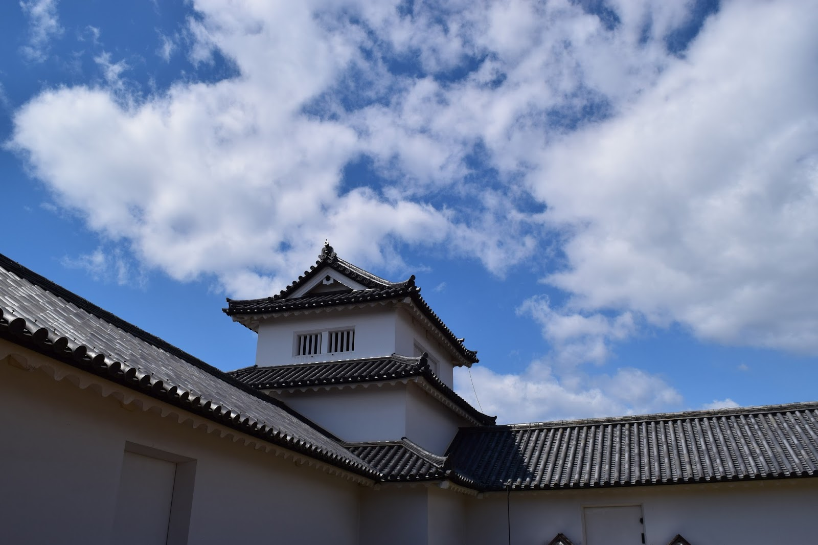 Hikone Castle wall