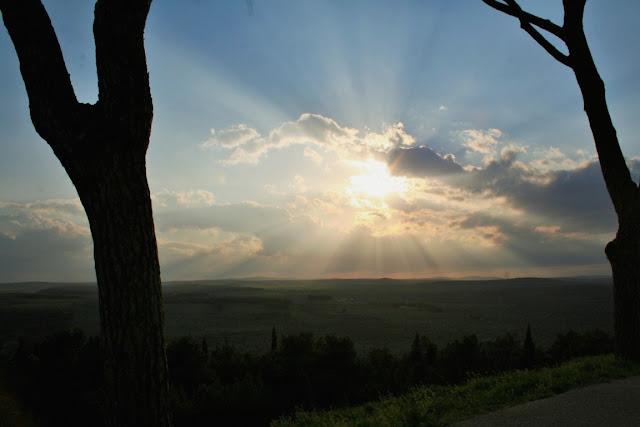 alberi, tronchi, cielo, tramonto, imbrunire, sole, vegetazione, collina
