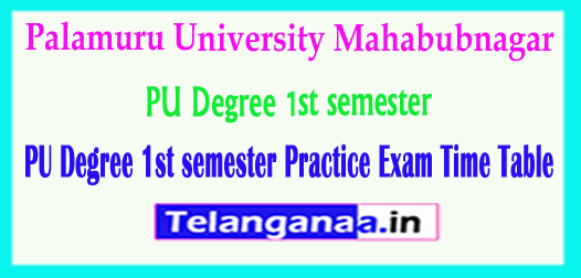 PU Degree Palamuru University 1st semester Practice Exam Time Table 2018