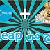 شرح مفصل لموقع hitleap وكيفية الربح منة