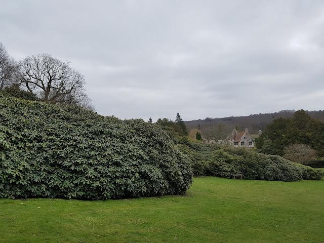 ogród-angielski