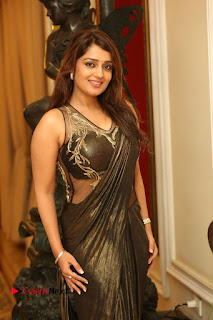 Actress Nikitha Pictures in Saree at Apartment Movie Audio Launch  0099