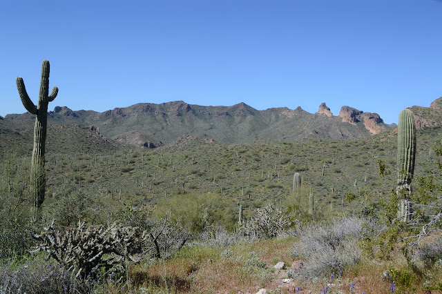 smooth mountains become buttes