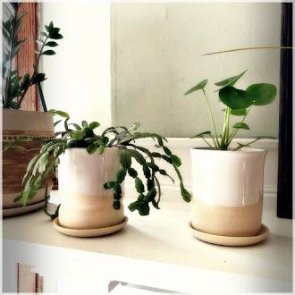 Zwei neue Form Pflanzgefäße in