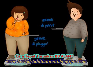 Bagaimana Perubahan Struktur Makroskopis Pada Orang Obesitas