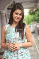Nikki Galrani at Prema leela pelli gola trailer Launch ~  Exclusive 097.JPG