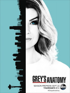Anatomia de Grey Temporada 13 audio latino