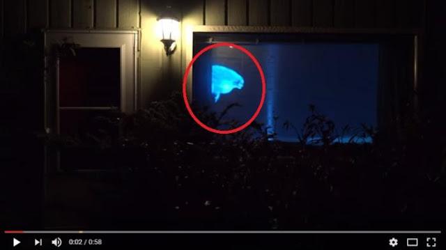 Ngeri ! Tetangga Sering Lihat Wanita Terbang di Jendela, Ternyata Ini yang Dilakukan Pemilik Rumah
