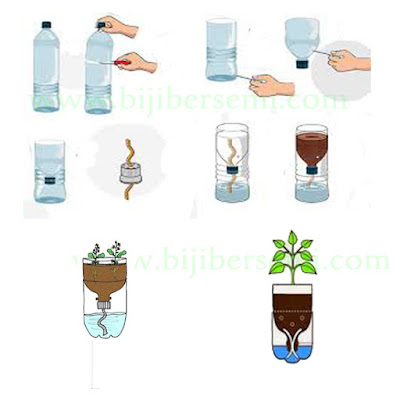 hidroponik, menanam dengan metode hidroponik, hidroponik dengan botol