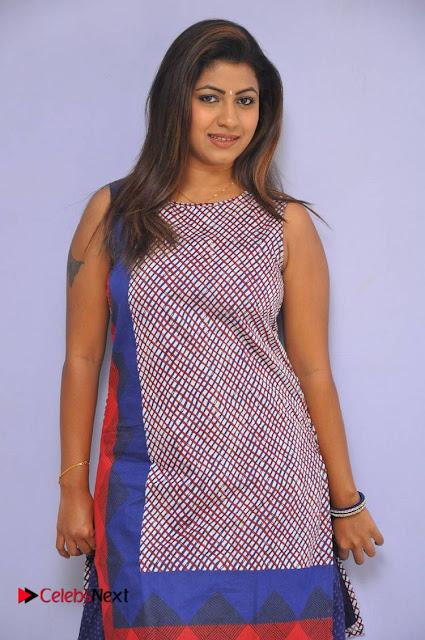 Telugu Actress Geethanjali Stills at Avanthika Movie Trailer Launch Event  0001.jpg