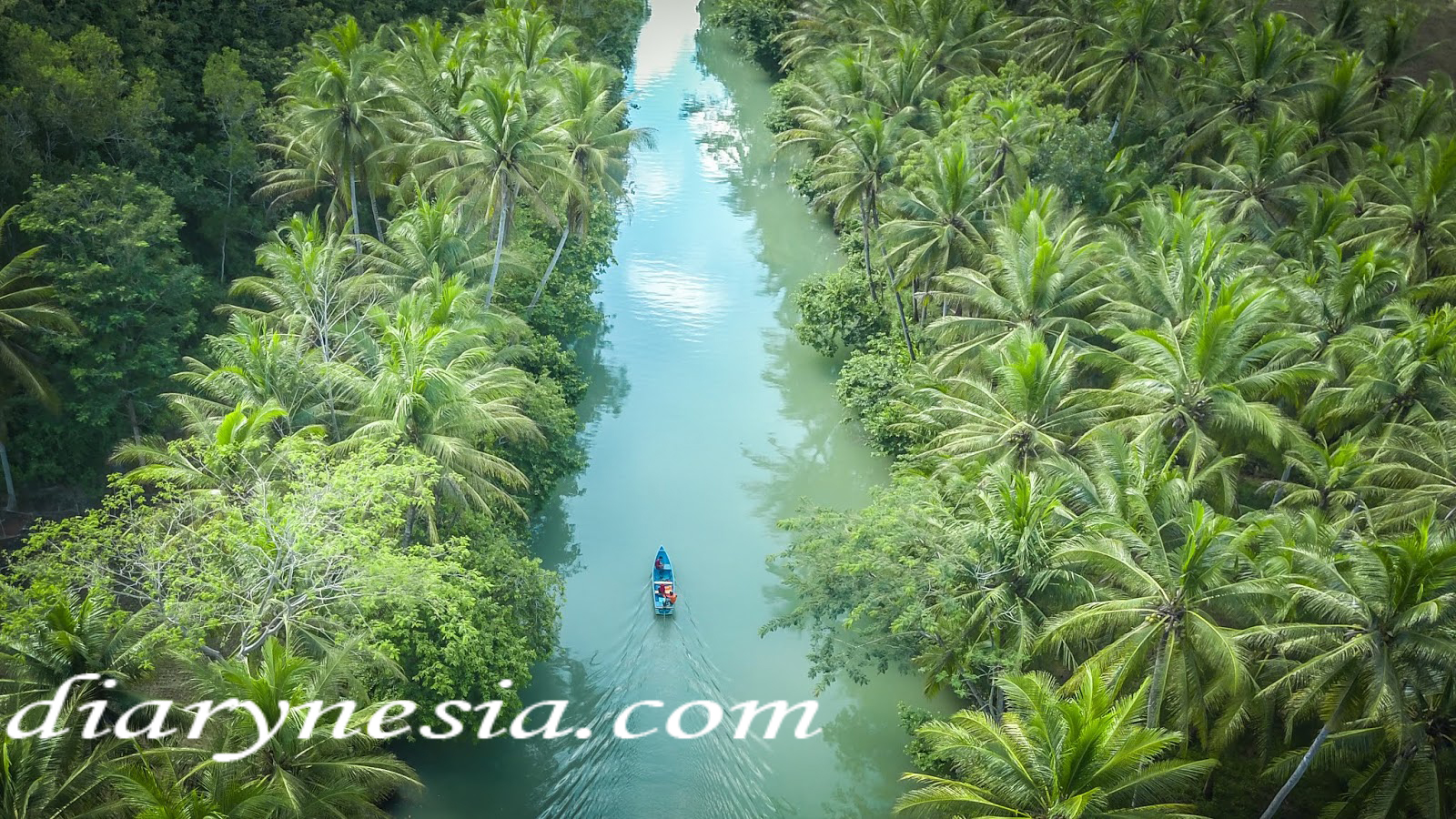 Pacitan Tourism, East Java, Pacitan Touris Attraction, diarynesia