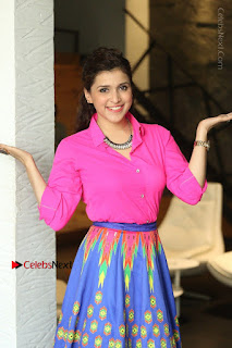 Actress Mannar Chopra in Pink Top and Blue Skirt at Rogue movie Interview  0028.JPG