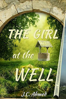 The Girl at the Well - Book Review - Life With Katie