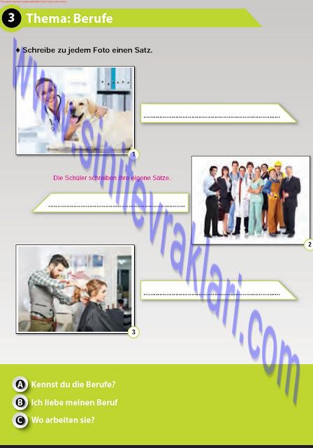 Almanca A1.2 Çıpa Yayınları Çalışma Kitabı Cevapları Sayfa 29